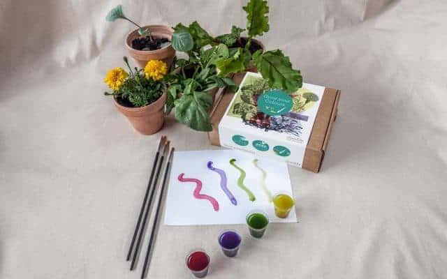 flantefarve grow your colours