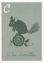 C for chinchilla